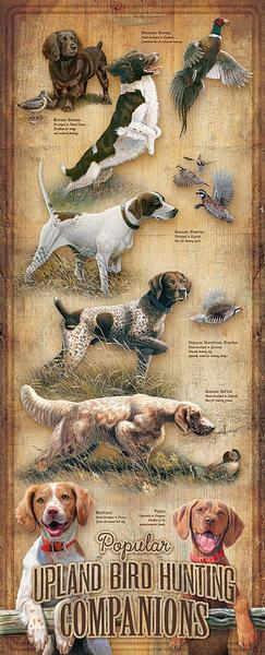 Popular Upland Bird Hunting Dogs