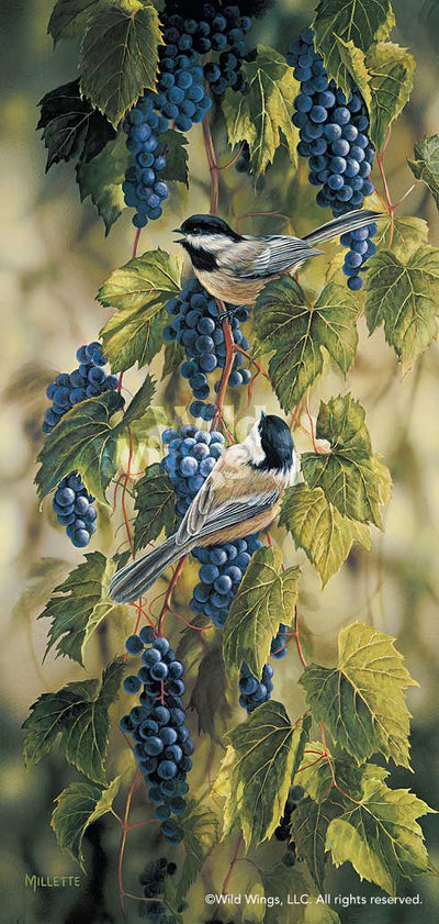 Vineyard—Chickadees.