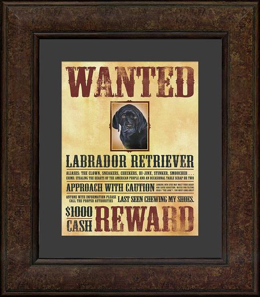 Wanted—Lab Poster.