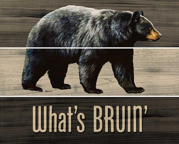 What's Bruin—Black Bear.