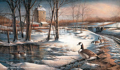 <i>Whistle Stop&mdash;Canada Geese</i>