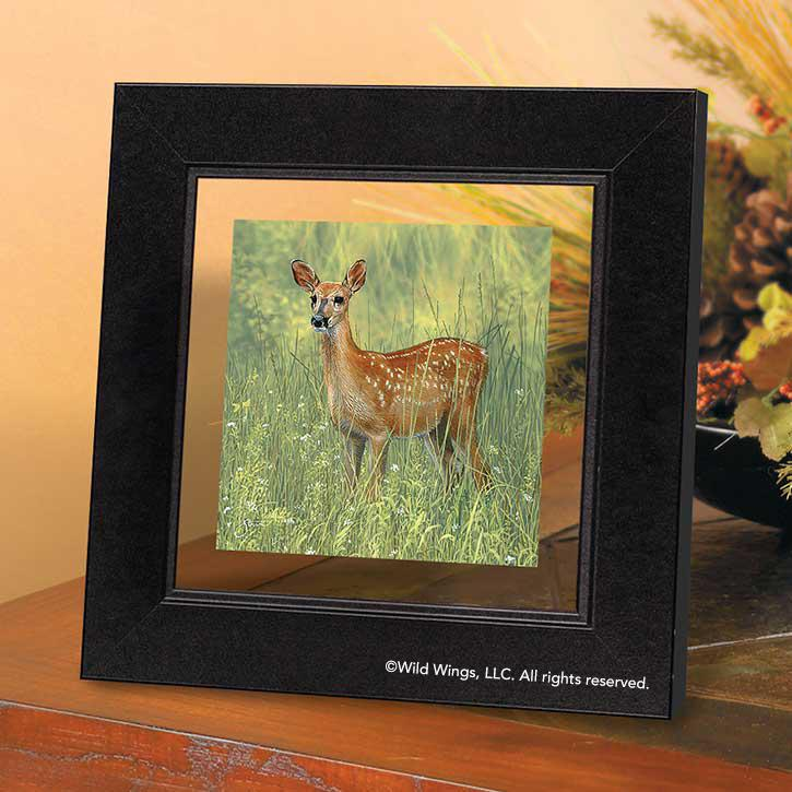 Whitetail Deer Fawn Framed Suspended Art Print