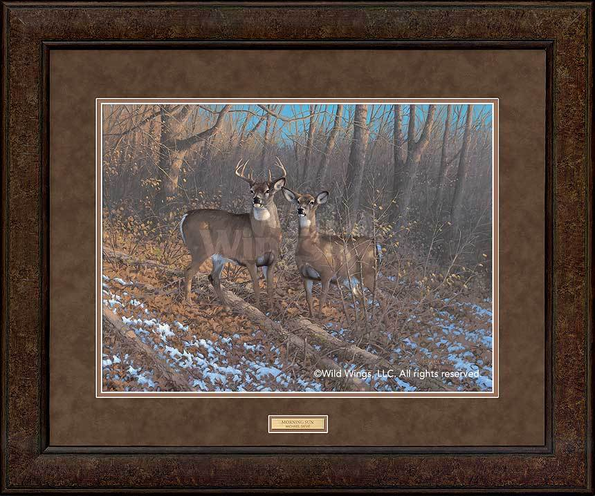 <i>Morning Sun&mdash;Whitetail Deer</i>
