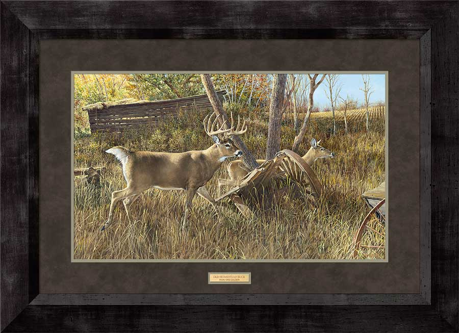 Old Homestead Buck Art Collection
