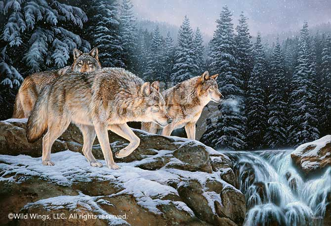 Spirit of the Wild-Wolves Art Collection