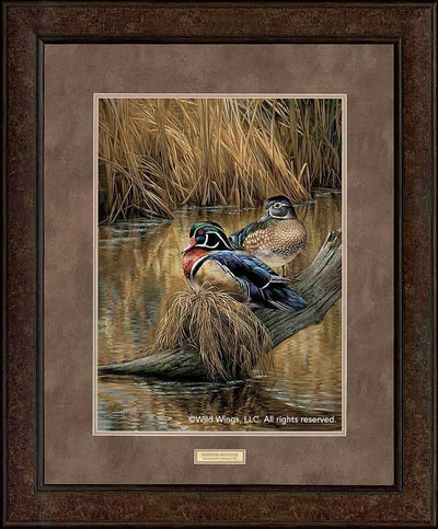 <I>Backwaters&mdash;wood Ducks</i> Gna Premium+ Framed Print<Br/>35H X 29W Art Collection