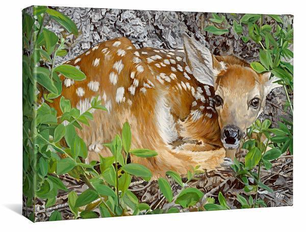 Woodland Wonder—fawn Gallery Wrapped Canvas