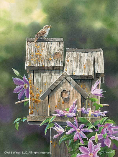 Dream House—Wren.