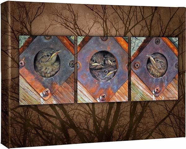 <I>Wrens Triptych</i> Gallery Wrapped Canvas