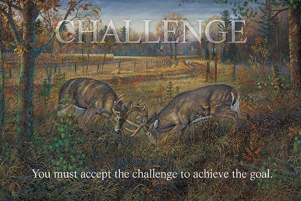 Challenge—Whitetail Deer.