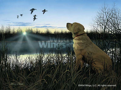 Diligence-Yellow Lab Art Collection