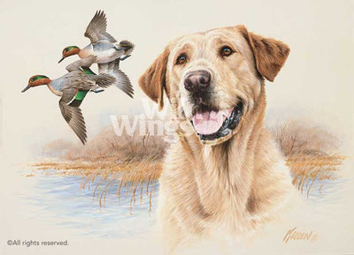 In the Marsh-Yellow Lab Art Collection