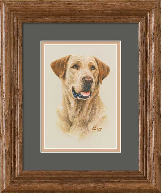 Labradors Art Collection