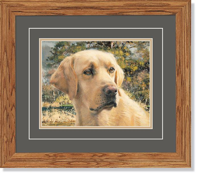 <i>Flash&mdash;Yellow Lab Dog</i>