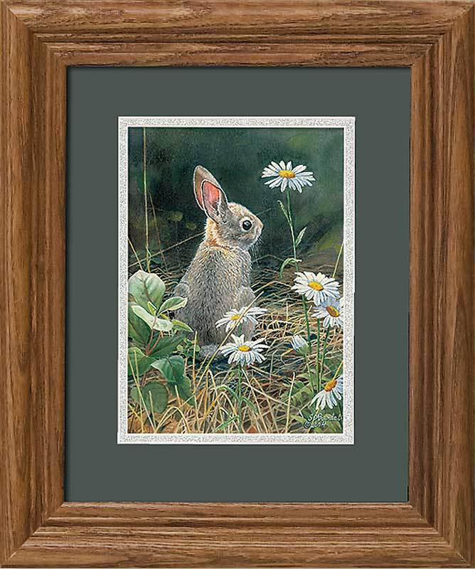 <I>Young Cottontail&mdash;rabbit</i> Gna Mini Framed Print