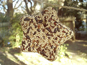 Birdseed Star Ornament