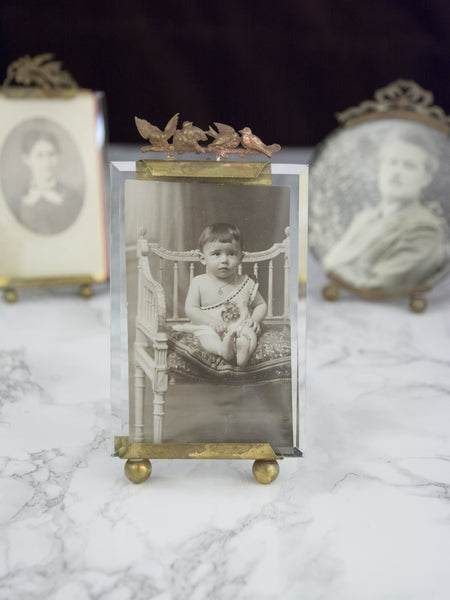 Antique Small Rectangular Bird Picture Frame