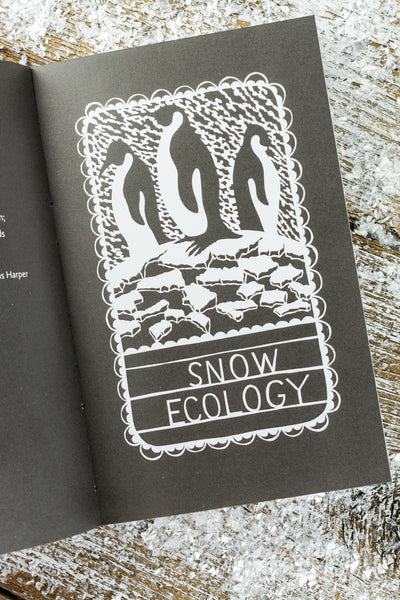 The Little Book of Snow: The Story of Nature's Best-Loved Spectacle