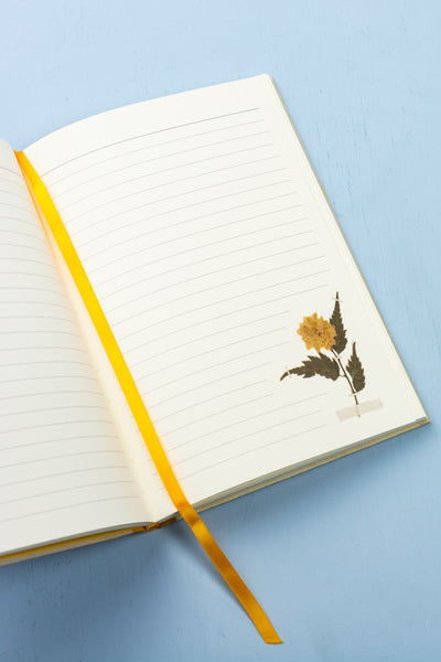 Emily Dickinson Notebook : A Blank Journal Inspired by the Poet's Writings and Gardens
