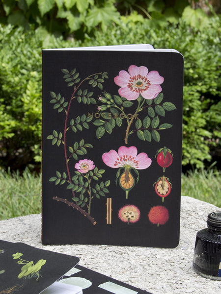 Black Botanical Notebooks - Set of 3