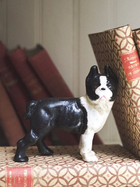 Cast Iron Boston Terrier