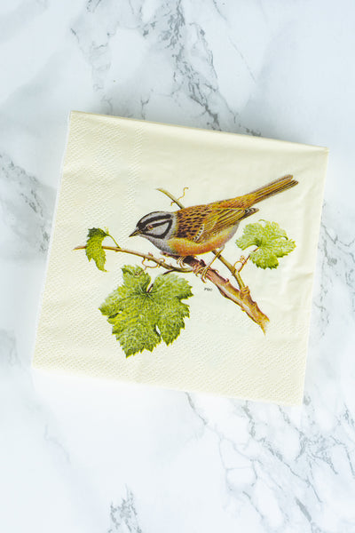 Chickadee Paper Beverage Napkins - Pack of 20