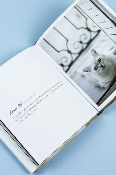 The French Cat Book