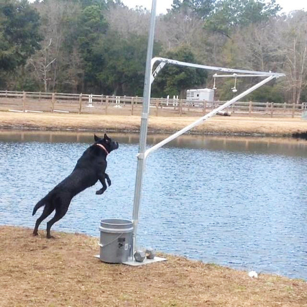 Portable Vertical Dog Rig