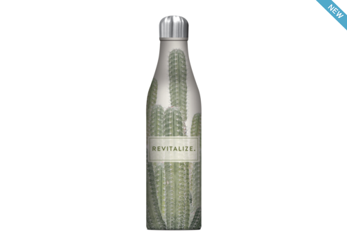 Refresh Cactus 17 oz water Bottle