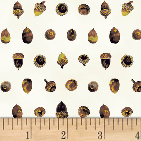 Cotton Print / Acorns