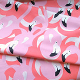 Pink Flamingo in Pink