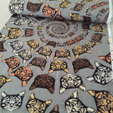 Cotton Print / Cat-Finity