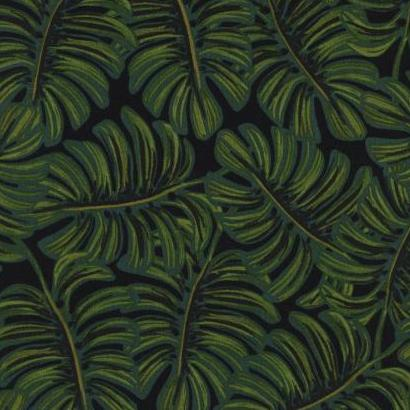 Monstera in Midnight
