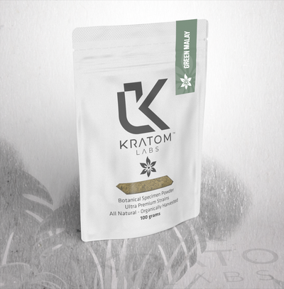 Kratom Raw Powder | 100g Bag