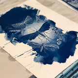 Blue Prints:  Cyanotype