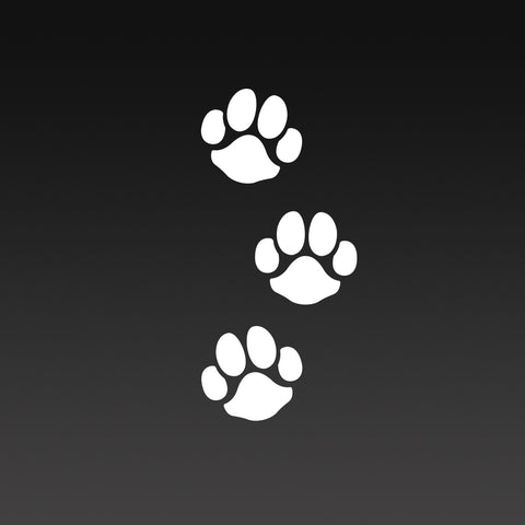 Dog Paw Print Trail T-Shirt