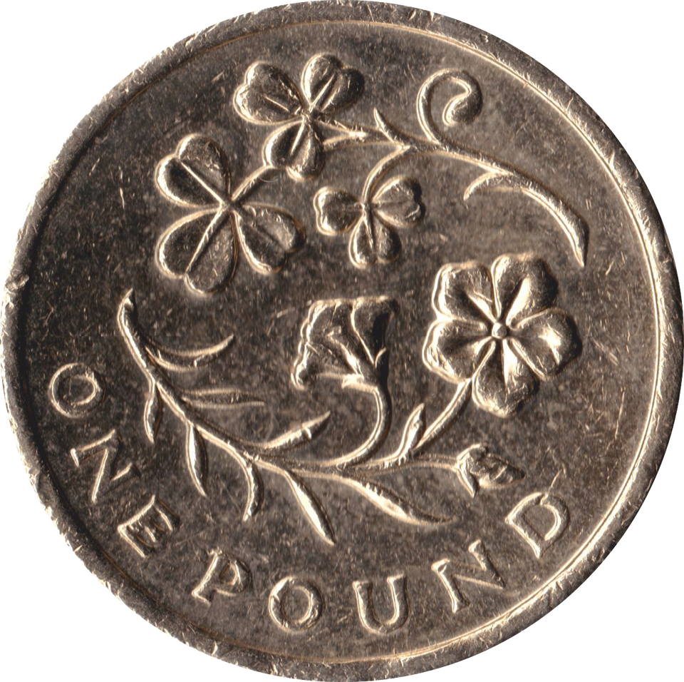 2014 CIRCULATED £1 Floral Clover