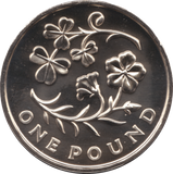 2014 ONE POUND BU £1 NORTHERN IRELAND