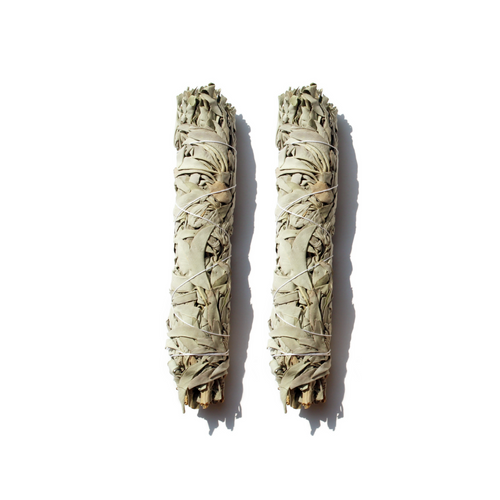 California White Sage - 9 in (Pack of 2) - Spiritual Nexus