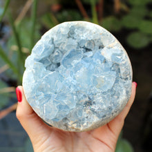Load image into Gallery viewer, Celestite Cluster - Spiritual Nexus