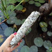 Load image into Gallery viewer, California White Sage - 9 in (Pack of 2) - Spiritual Nexus
