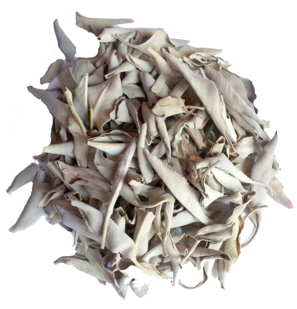 California White Sage - 9 in, www-spiritual-nexus-com