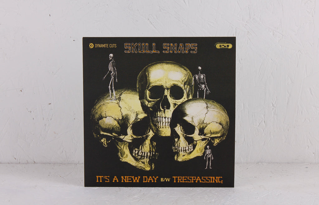 It's A New Day / Trespassing – Vinyl 7""