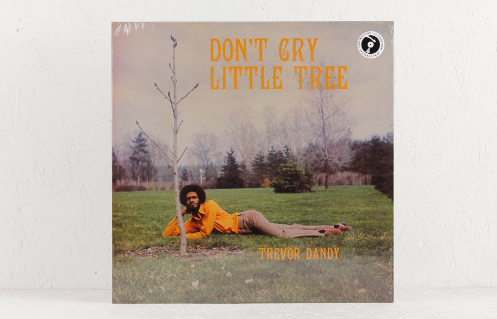 Trevor Dandy ‎– Don't Cry Little Tree – Vinyl LP