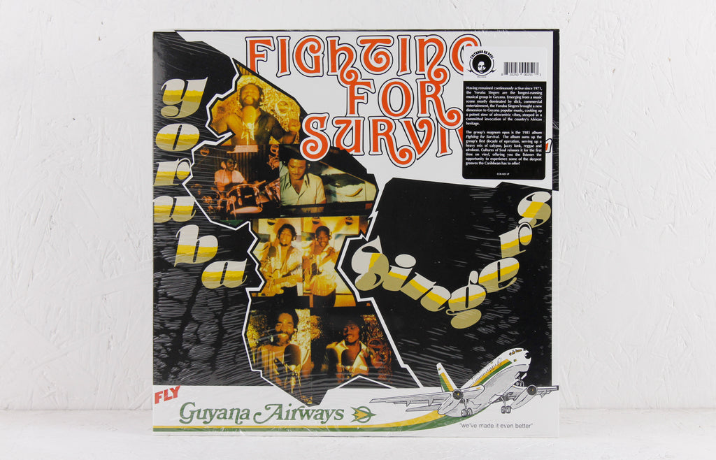 Fighting For Survival – Vinyl LP