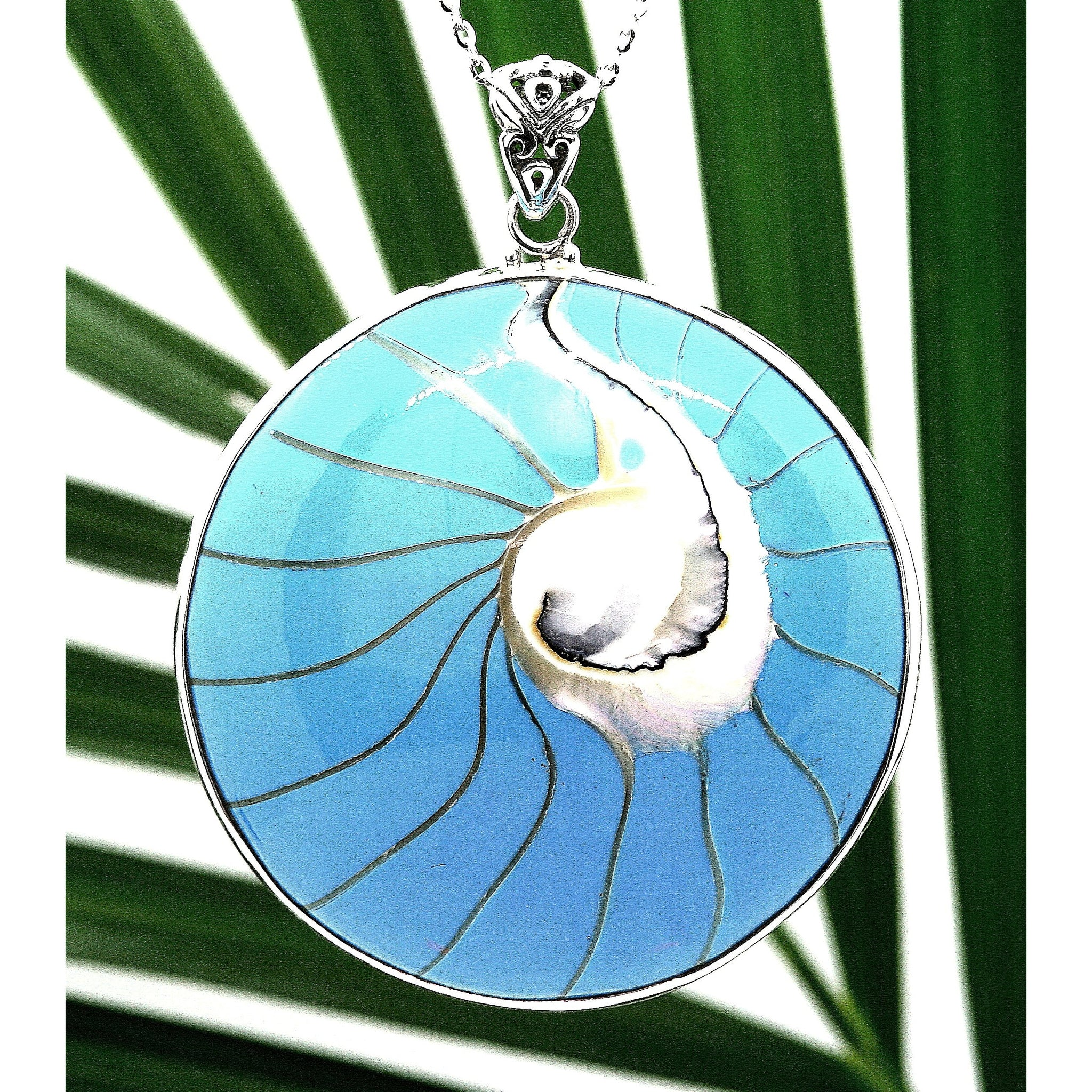 Robin Egg Blue Natural Nautilus Shell Necklace