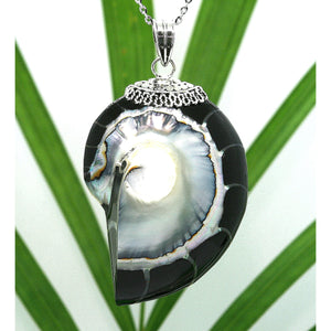 Black Natural Nautilus Pearl Shell Necklace