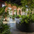 Greenery NYC Brings Botanics to Urban Environments