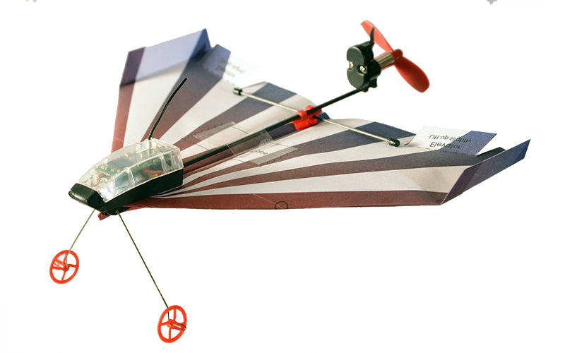 Paper Plane Templates Videos Powerup Toys