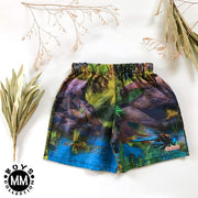 Dinosaur Boys Shorts - Mini Mooches is an Australian owned business specialising in handmade clothing and accessories for girls aged between 1-10. Beautifully designed Floral Dresses, Peplum Tops, Suspender skirts and shorts. Special occasions to everyday wear.